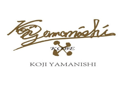 koji yamanishi