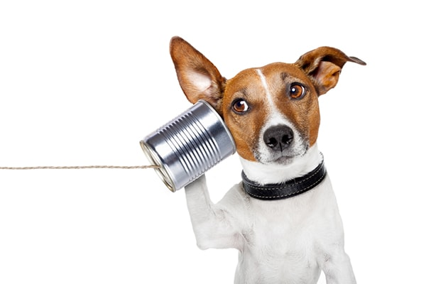 【印象に残る電話対応】3つのポイント